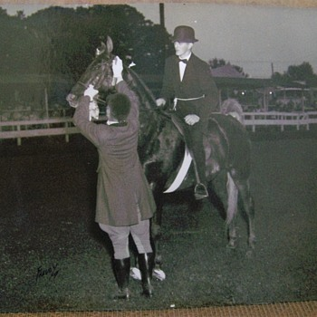 OLD Show Horse Photographs one take by Freudy Ny. Unknow Location or Horses. - Photographs