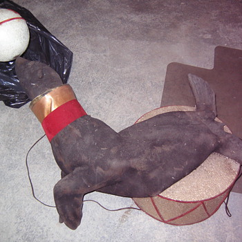 seal on on drum with white ball that spins around on his nose