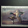 1995 $15.00 DUCK STAMP