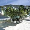 Green bullicante ruffled bowl