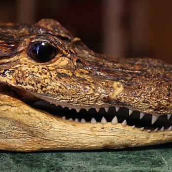 Smiley Croc