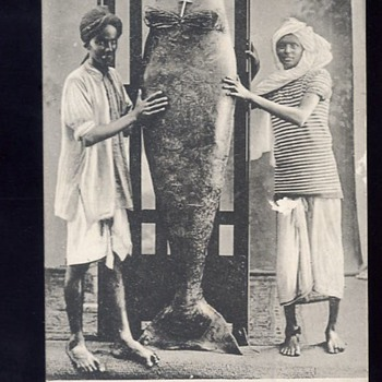 Mermaid of Aden (1911) - Postcards