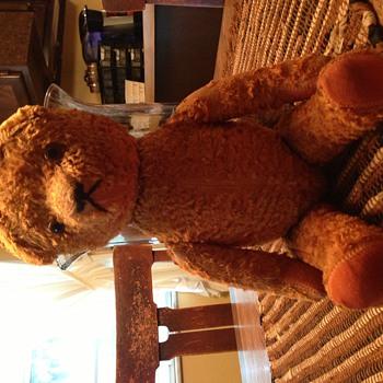 Unknown Bear
