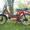 1982 SLE Derbi Moped