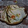 Haviland bowl