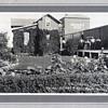 Prize winning Railway Gardens 1925