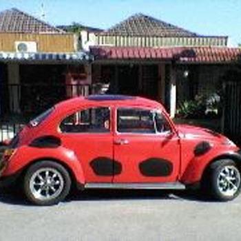 Classic Beetle - Classic Cars
