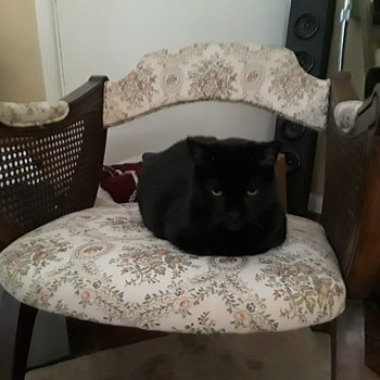 do I want this fuggly chair?? - Furniture