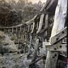 Puffing Billy Railway Trestle Bridge