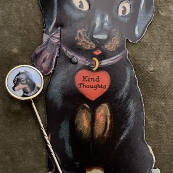 It's a MinPin… not a Miniature pin?!  - Animals