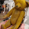 Do You know this Bear?