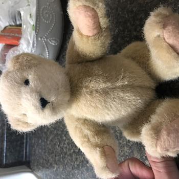 Teddy Bear needs identified - Dolls