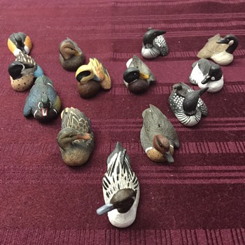 Roger Desjardins ducks