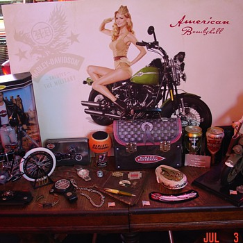 Harley Davidson... A Few Of My Collectibles Through The Years Of Riding - Motorcycles