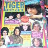 1970s' TIGER BEAT MAGAZINES TONY DE FRANCO DONNY OSMOND LEIF GARRETT
