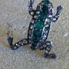 Froggies  details.