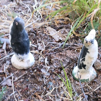 A Pair of Plaster Penguins Perfectly Placed - Animals
