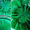 A Green Leaf Plate