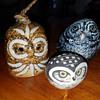 Three little Owl's