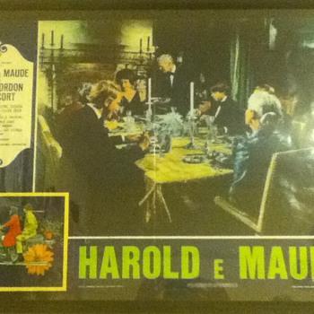 "Italian ""Harold and Maude"" Poster - Movies"