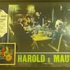 "Italian ""Harold and Maude"" Poster"