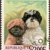 "1998 - Benin ""Shih-Tzu"" Postage Stamp"