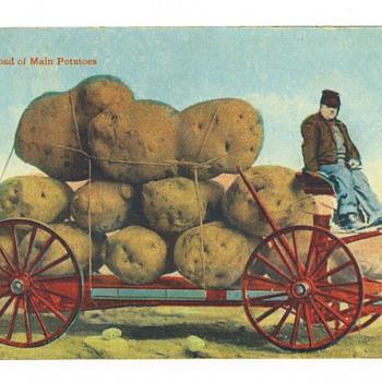 Main Potatoes
