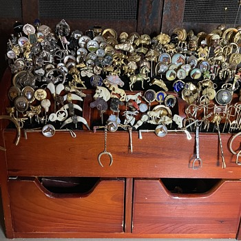 My Horse/Equestrian collection. - Animals