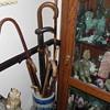 Cane and umbrella collection