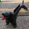 Antique Cast Iron Dachshund Boot Scraper With Straight Tail