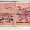 SD & SS issued visa inside a 1943 Bulgarian passport