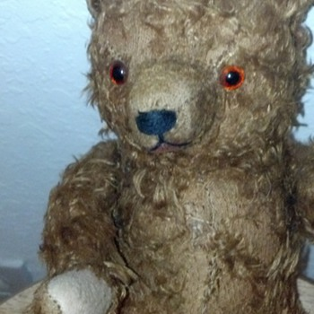 Unsolved Mystery Bear-Want to find out it's origin- - Animals