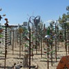 Elmer's Bottle Tree Ranch Route 66 Oro Grande California