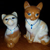Fenton Cat's