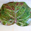 Early Signed Dodie Thayer Ceramics Cabbage/Lettuce leaf Dish