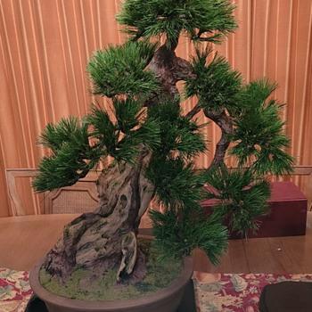 Mom's Silk Bonsai - Asian