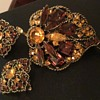 Brooch and earrings