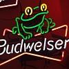Budw Frog neon