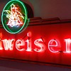 Budweiser V9 neon Kirn sign