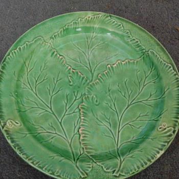 old leaf plate