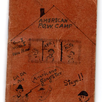 "WWII P.O.W. Diary ""Bugs & Bombs"" by my Father"