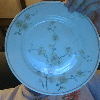 Johann Haviland plate with white cherry blossoms - China and Dinnerware