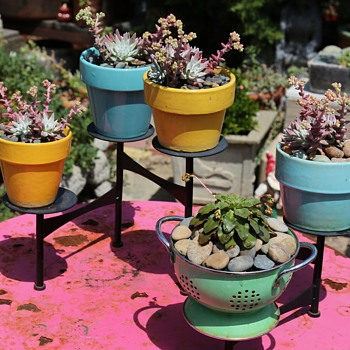 Vintage California Flowerpots - in use! - Pottery