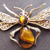 Tiger's eye big Victorian insect  brooch.