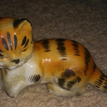 Cat laying down  - Animals