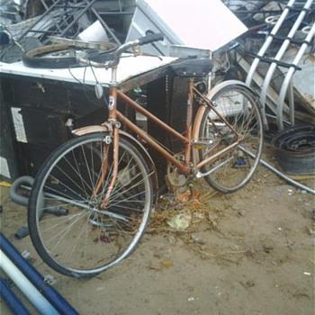 Panda....60's bike?  - Sporting Goods