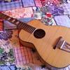 Mid-Late 1950's Stella H928 Acoustic Guitar