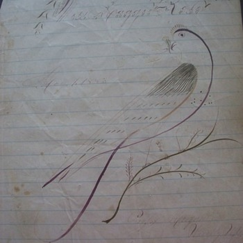 1883  Hand Drawn Sketch of Partridge