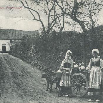 LAITIÈRES FLAMANDES - Postcards