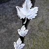Trifari Leaf Brooch Set
